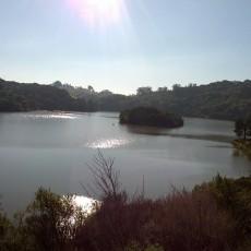 Lake Chabot Regional Park sunshine