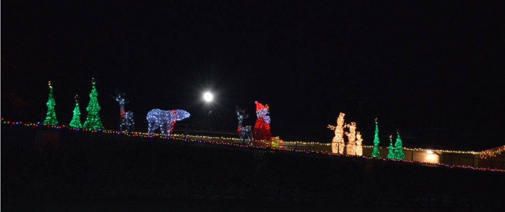 fremont xmas lights -38643 Glencoe Dr-school