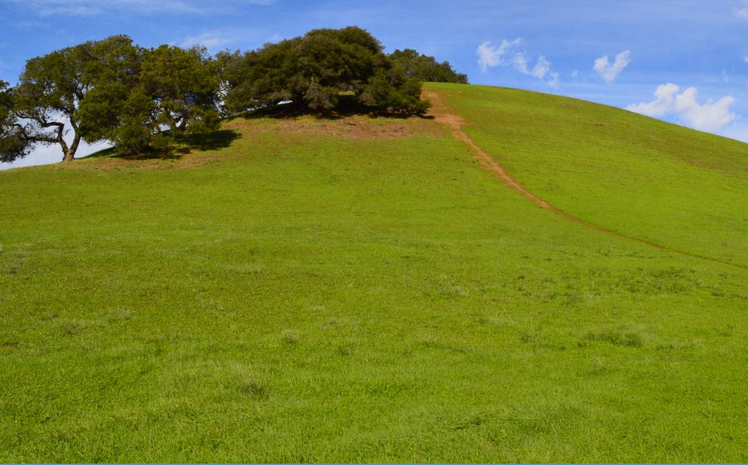 dry creek park_hills