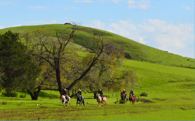 dry creek park_horse riding